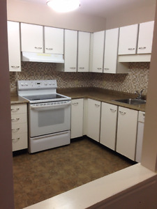 Dog and cat friendly 2 bedroom condo for rent - Clayton Park