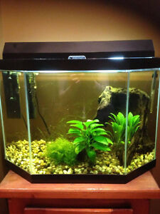 Aquarium 18 gallons