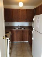 Clean one bedroom available June 1st Minnow lake