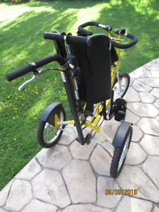 Special Needs Trike - Freedom Concepts Child Discovery Trike