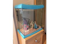 Small Fish Tank / Aquarium with all accessories