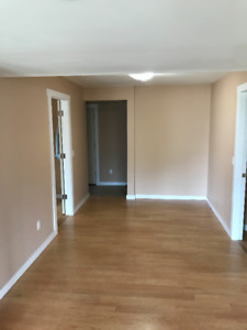 Bright and Spacious Two Bedroom Basement For Rent