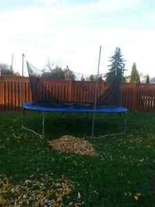 Trampoline  Windsor Region Ontario image 1
