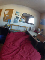 room beside University of Calgary with roommates