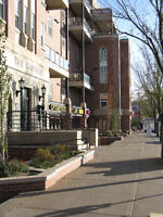 PRICE REDUCED Luxery 1-Bdrm Apt Whyte Ave, University, Hospitals