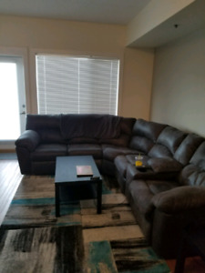 Beautiful 1 Bed + Den Sublet Near U of M