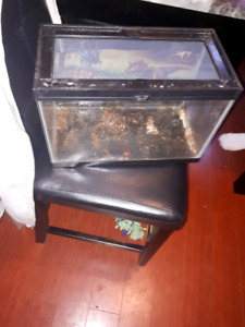 10-15 gallon tank with mesh lid and food dish