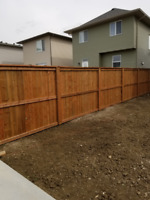 Professional Landscaping & Fencing