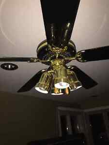 Ceiling Fans and Sconces Windsor Region Ontario image 3