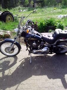 Softtail for the price of a sportster