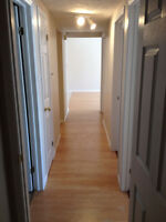 Main Level Walk-up w/Semi Private Patio, New Floors&Paint& MORE