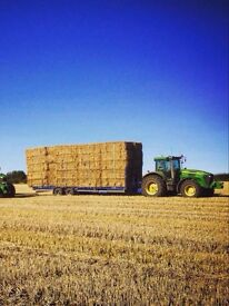 Haylage, hay and straw bales available in different sizes including small bales.