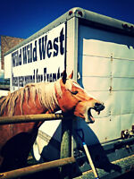 Wild West Country Boutique Market