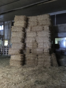 For sale Straw bales