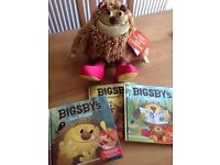Bigsby interactive bear with three story books £5