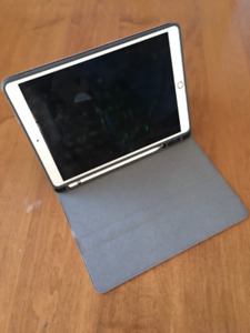 10.5 iPad Pro with Apple Pencil and Cases