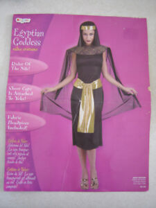 Egyptian Goddess costume - ladies size 12-14 (can fit smaller)