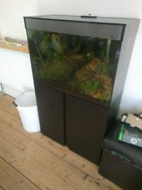 Ciano 120 litre Aquarium complete with contents, accessories