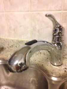 Moen Kitchen Single Handle Pullout Faucet - model 87316 series
