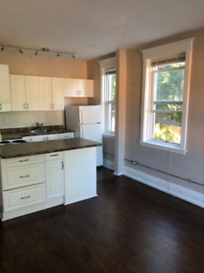 1 bedroom suite @Main St, Hamilton   WalkScore 86!