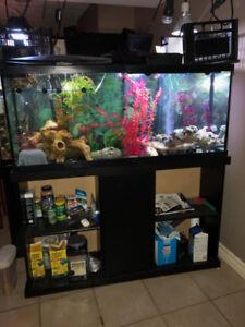 56 Gallon Fish Tank w/ black stand, lights, 2 filters,  & heater