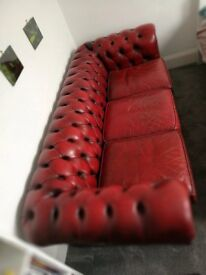 Chesterfield Oxblood Red Sofa
