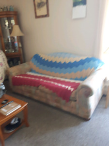 Queen bed and double sofa bed