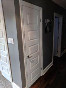 Closet door includes door handle - solid core