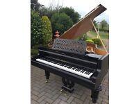"""Bosendorfer 5ft6"""" grand piano black case reconditioned"""
