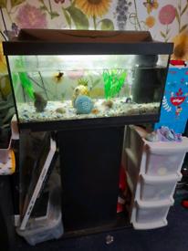 Tatra Fish tank with stand