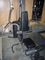 Northern Light - Multi Gym,  150 lbs of weights.