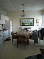 Appartement 3 1/2 St-Zéphirin de Courval