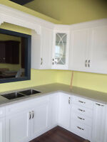 Affordable Custom Cabinet FROM $189/L.F