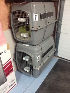 Cages vari kennel taille 3