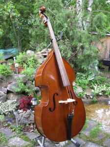 Double bass / upright bass - Contemporary Hybrid