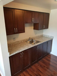 End Unit Townhome in North Galt $1,395+/month, Avail Mar 1st!
