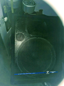15 inch yorke dales. Dj speakers. 300 firm matching pair. Thanks