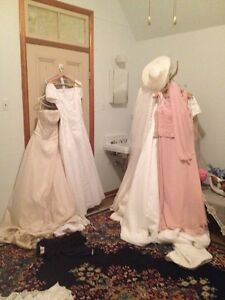 Plus Size Wedding Gowns and Bridesmaids Dresses