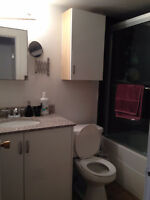Nice 1 bedroom suite, quiet, clean, renovated, for Jan 1st/16