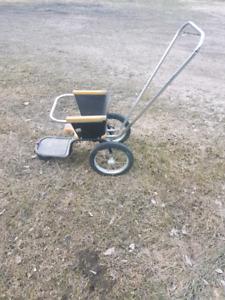 Vintage amusement park stroller/carriage