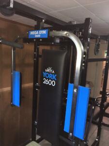York 2600 MEGA Gym Workout Machine  $100