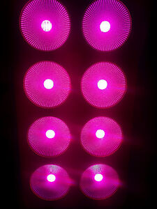 Full spectrum 1536W COB LED grow Light HPS Killer hydroponic