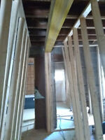 Carpenter renovator/framer