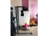 Tricep dip station with weight belt