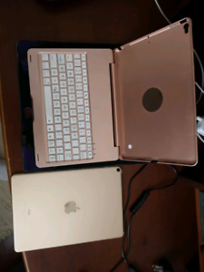 Apple 256 gb i pad pro gold and as case the keybord