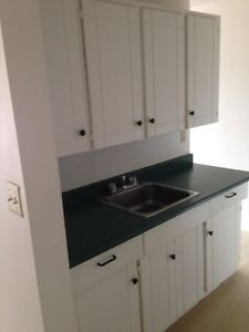 Renovated 1 Bedroom apartment to rent