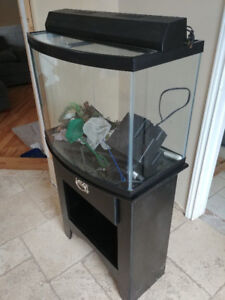 Curved-face fish aquarium with stand and accessories