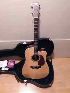 Martin DC 16 RGTE Guitar and Case