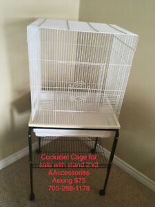 Cockatiel Cage /Stand and Accessories For Sale