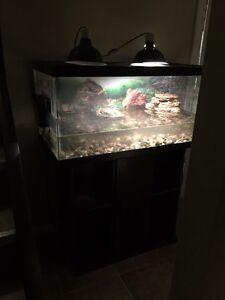 Large turtle tank w/accessories